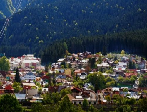 Noi servicii publice disponibile online pe site-ul Primariei orasului Busteni